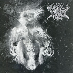 Burmese / Cadaver Eyes — Split EP (2008)